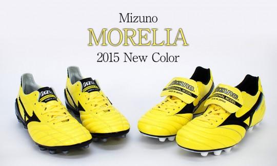 morelia2015-main